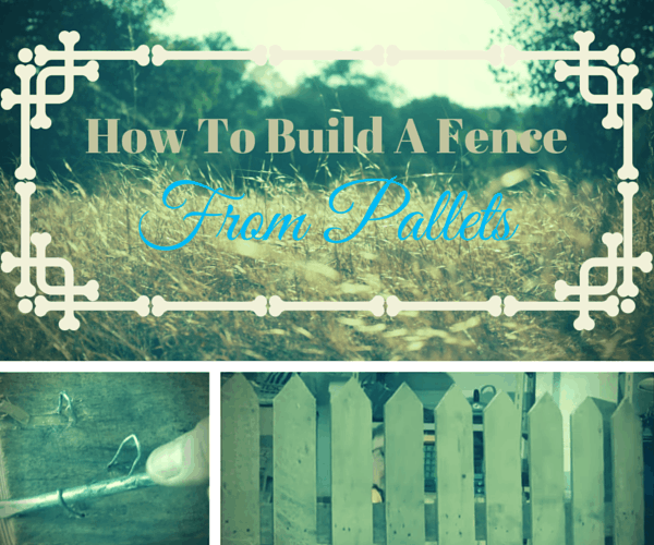 DIY fence from pallets (via www.thesawguy.com)