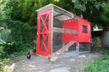 DIY stylish chicken coop with predator protection
