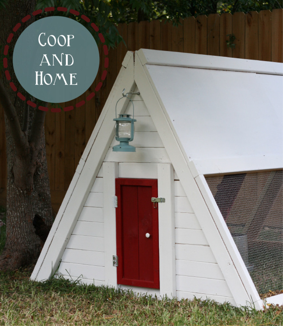 DIY patriotic red, blue and white chicken coop (via https:)