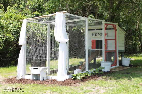 DIY functional chicken coop