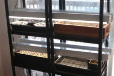 DIY indoor seed starting station