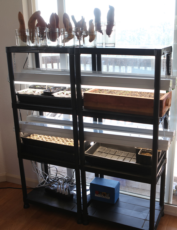 DIY indoor seed starting station (via https:)