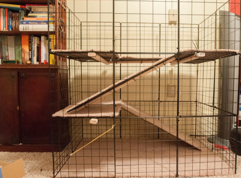 DIY large multi-level bunny cage (via https:)