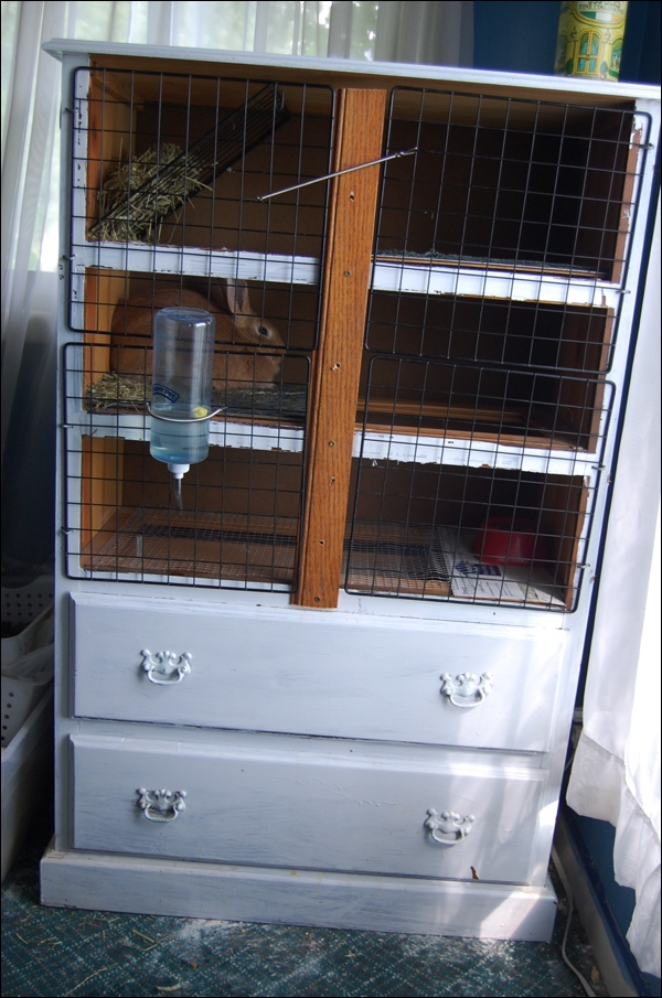 10 diy rabbit cages and hutches for your fluffy friends shelterness - How to make a rabbit cage ...