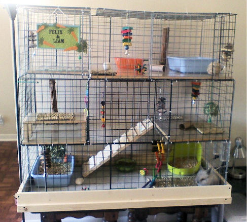 10 diy rabbit cages and hutches for your fluffy friends for Diy guinea pig hutch
