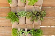 hang an over-the-door shoe holder on a fence and tuck herbs into the compartments for a fun twist on the vertical planter