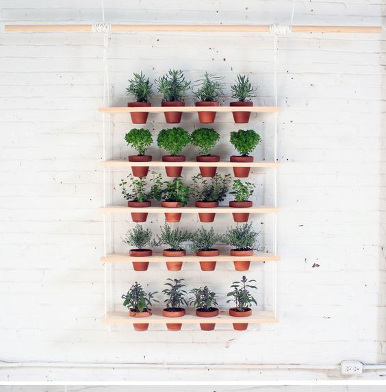 herb garden on wooden planks can be adapted to your window size and needs