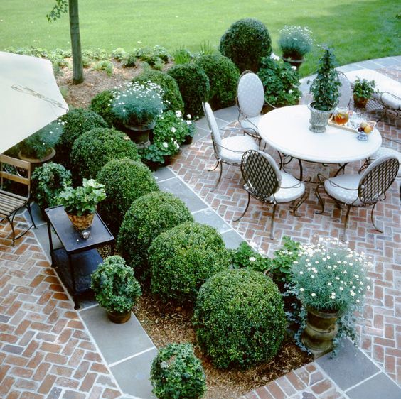 herringbone brick patio with lots of greenery to divide it into zones