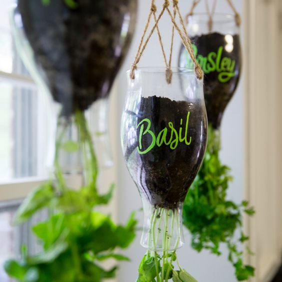 upside-downcycle herb planter made of plastic bottles with marks
