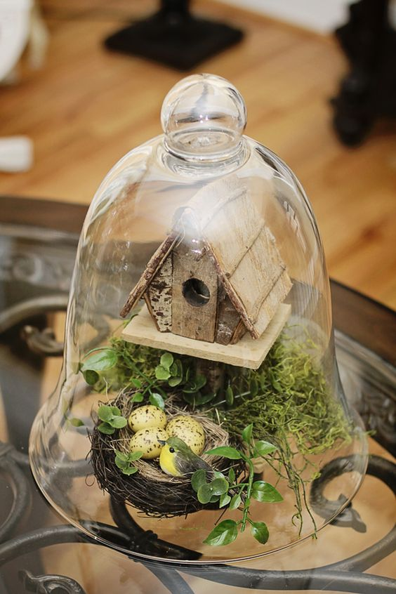 a cloche terrarium with faux greenery and moss, a bird house and a nest