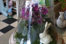 02 a cloche terrarium with moss, bunnies and purple flowers