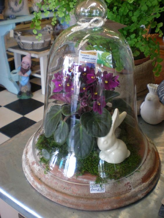 a cloche terrarium with moss, bunnies and purple flowers