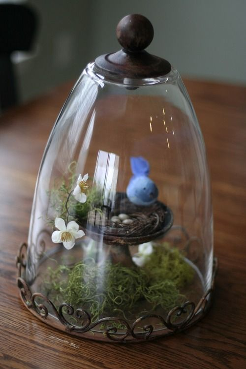 a cloche with moss and a tiny bird nest, a felt birdie and flowers