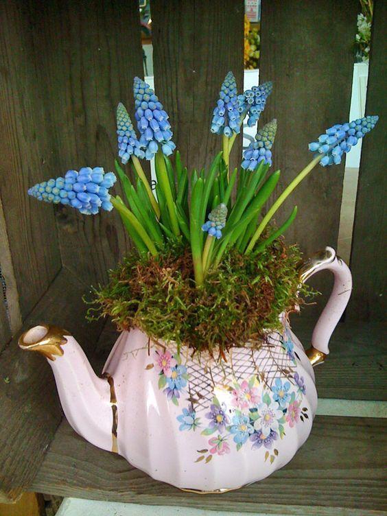 pink floral tea pot with spring bulbs