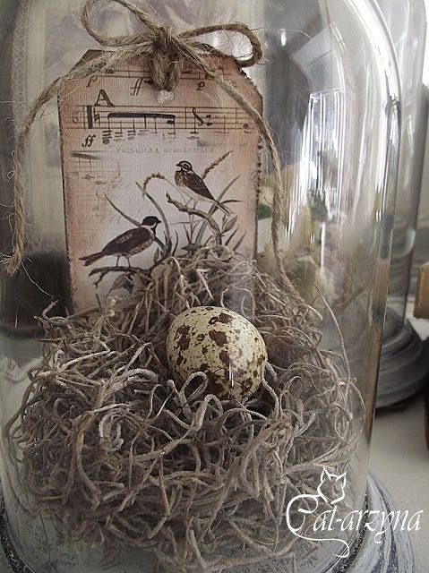 a vintage terrarium with twine, note paper and a speckled egg