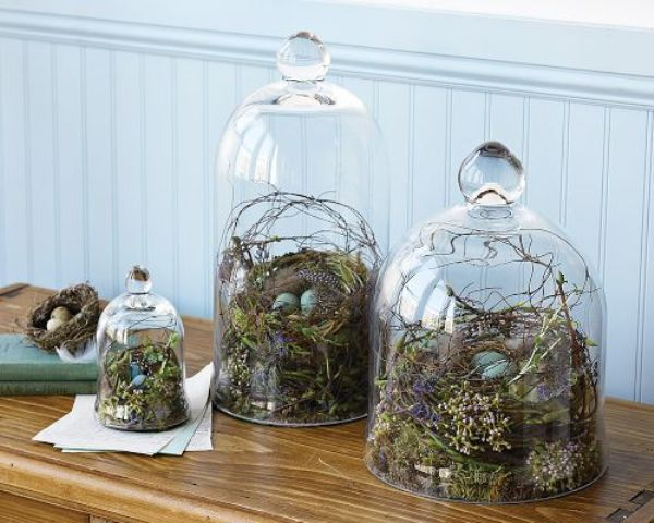 a terrarium combo made with cloches, grapevine nests, feathers and speckled eggs