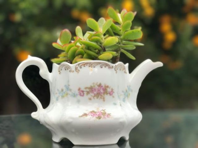 vintage tea pot repurposed into a succulent planter