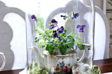 08 a cloche with moss and violas in a tea pot