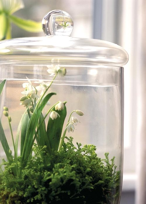 a jar with lily of the valley is very spring-like