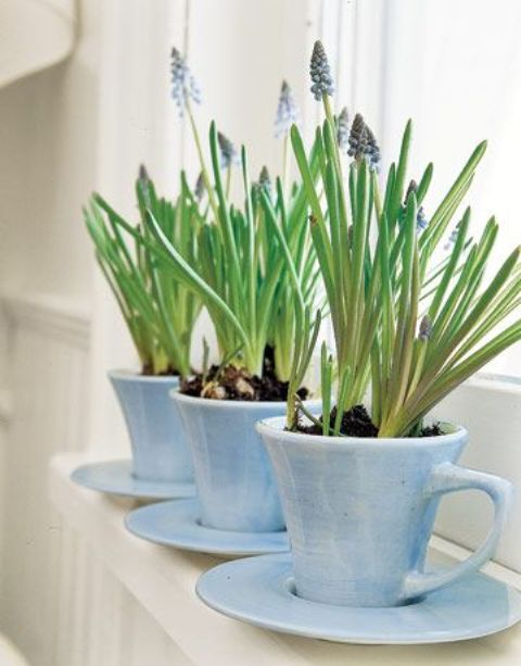 a set of blue tea cups with hyacinths