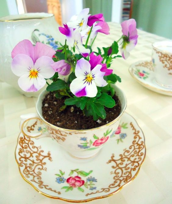 a vintage tea cup and a saucer with bold violas