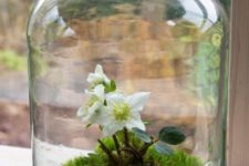 18 an oversized jar with moss and flowers