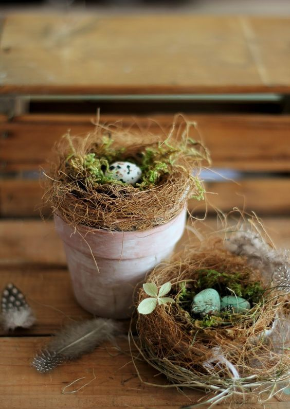 a whitewashed pot with a bird nest with moss and speckled eggs