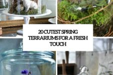 20 cutest spring terrariums for a fresh touch cover