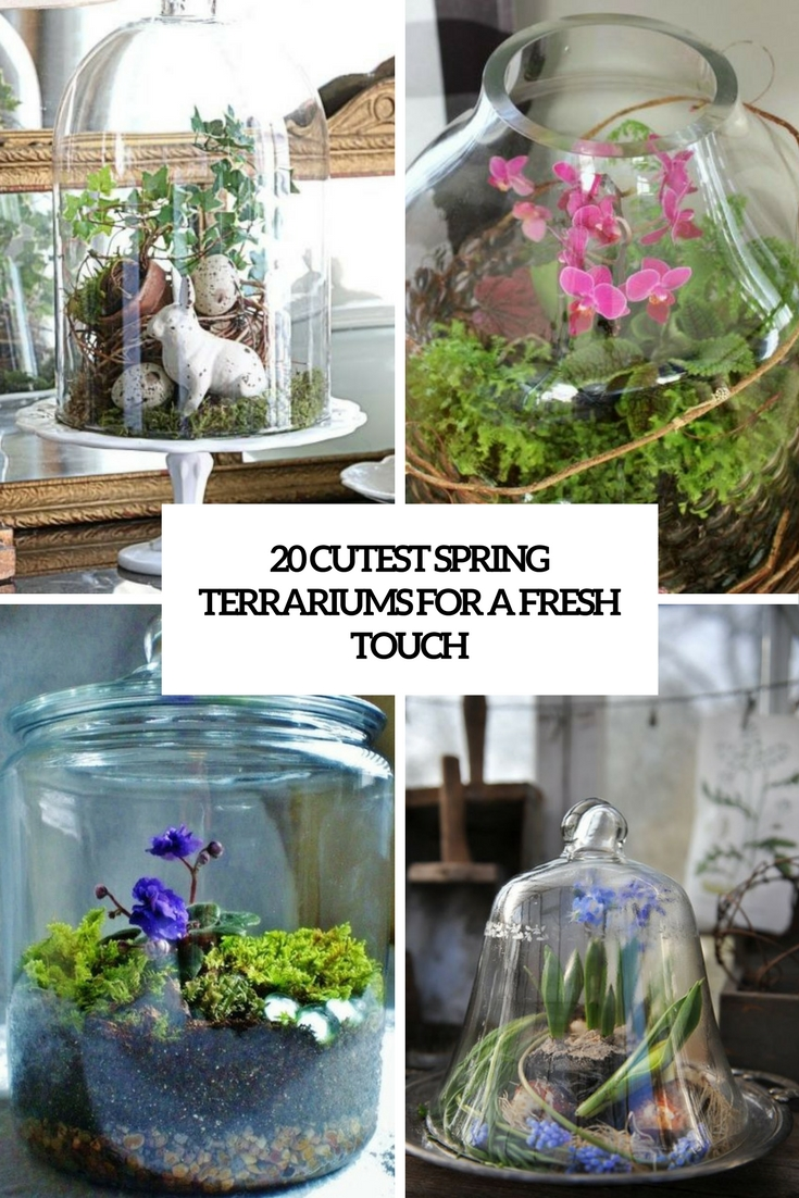 20 Cutest Spring Terrariums For A Fresh Touch