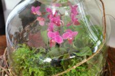 20 spring mini orchid terrarium in a jar, greenery inside