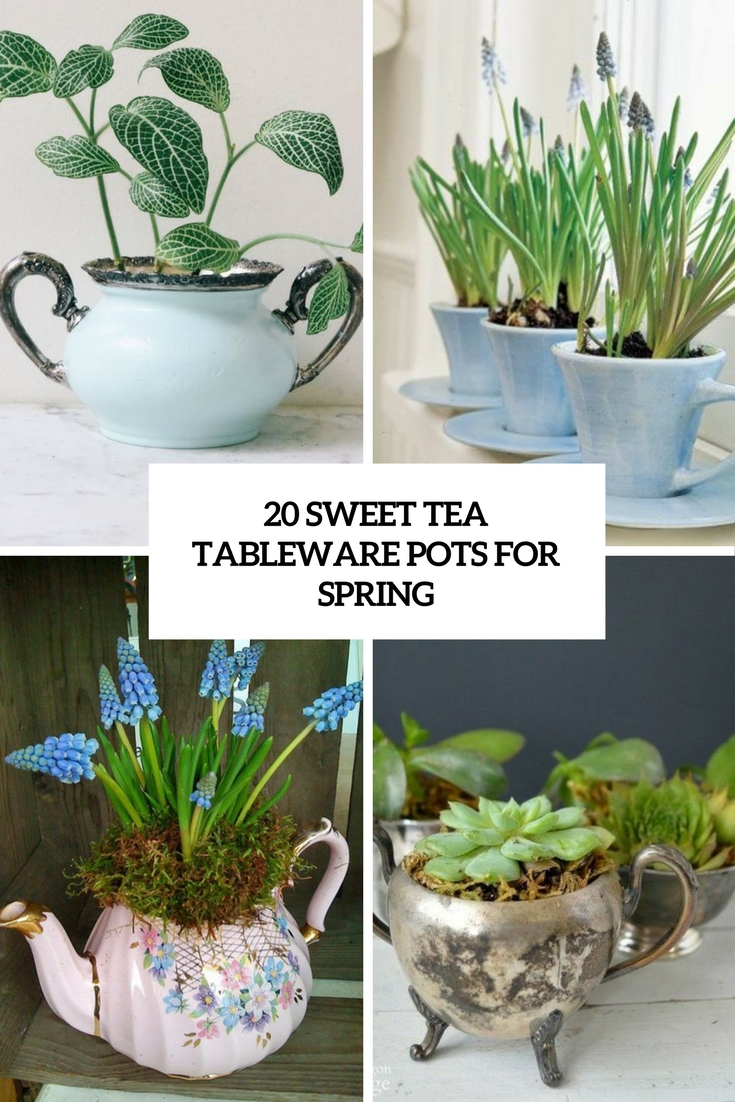 sweet tea tableware pots for spring cover