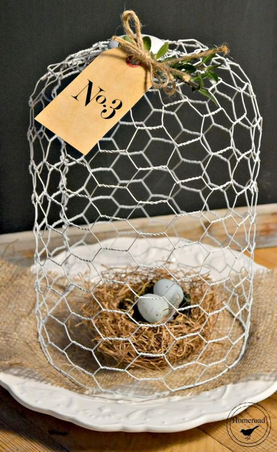 a wire cloche with a bird's nest and little eggs