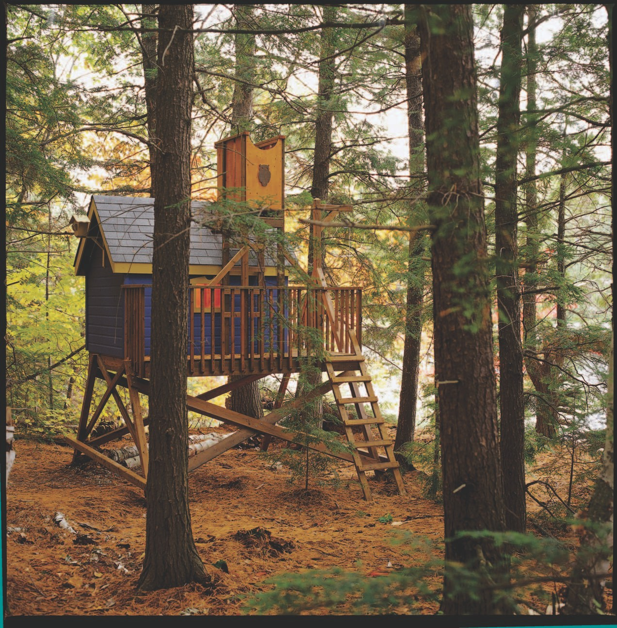 DIY tree house with a tower for your backyard