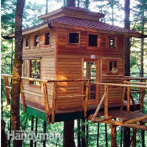 Tips to build a tree house (via https:)