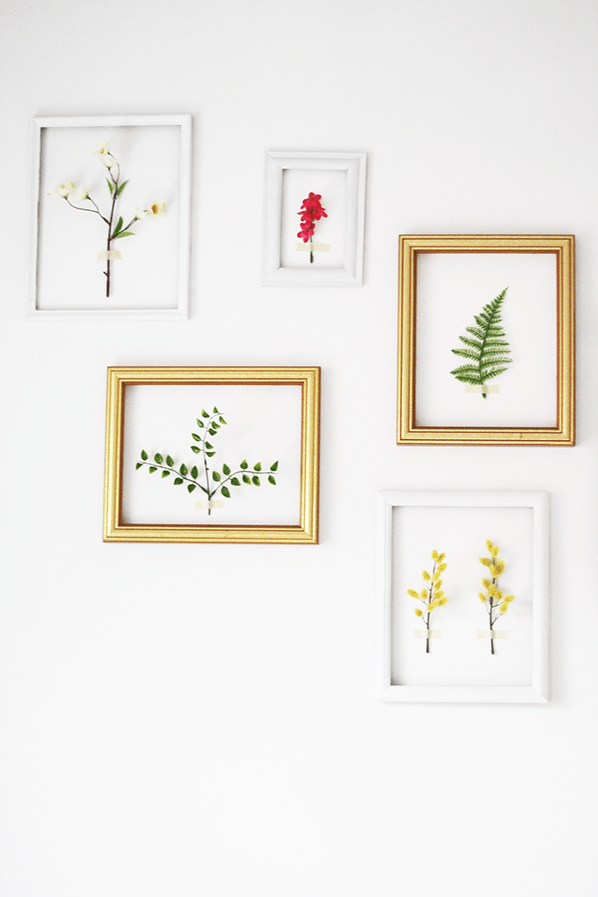 DIY 3D framed botanical wall (via www.thekipiblog.com)