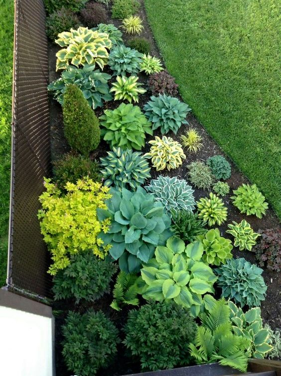 14 Beautiful Ideas To Landscape With Shrubs Shelterness
