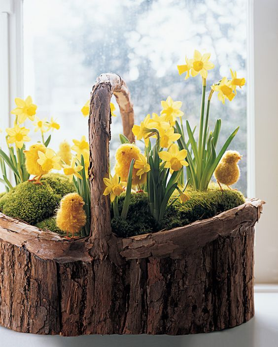 a wooden basket filled with moss, yellow daffodils and faux chicks