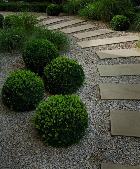 boxwood balls look cute and eye-catchy