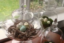 03 cloches and apothecary jars with a faux nest, moss and speckled eggs