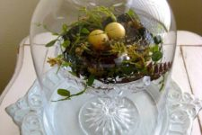 08 a cloche with a nest with greenery and eggs on a stand