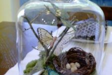11 a cloche with moss, branches, butterflies and a nest with eggs
