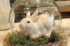 13 a small cloche with moss and a large bunny is very easy to make