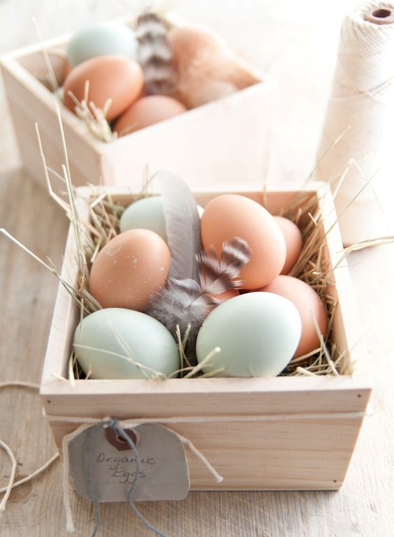 organic eggs nesting in small wooden crates makes for an interesting display