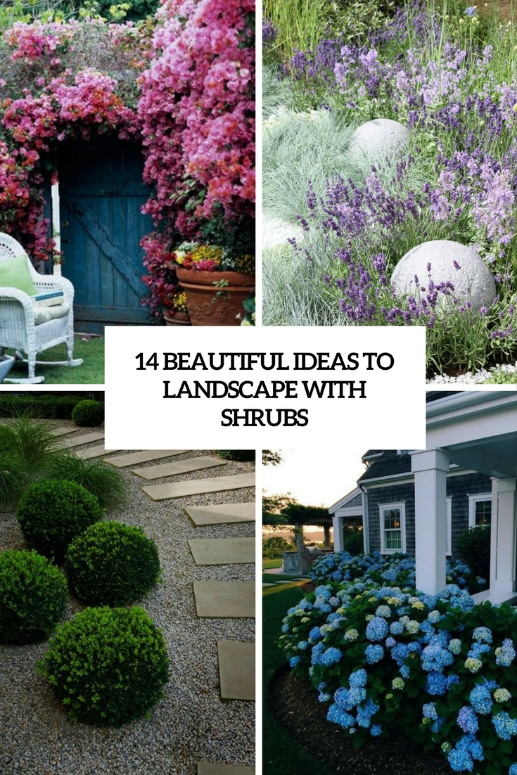 beautiful ideas to landscape with shrubs cover