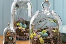 14 terrariums with nests with blue eggs, blooms, butterflies and feathers