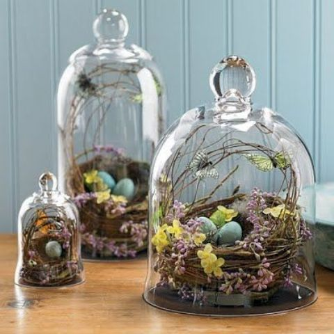 terrariums with nests with blue eggs, blooms, butterflies and feathers