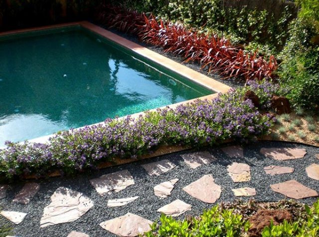 Hebe X Franciscana makes the pool more eye-catching