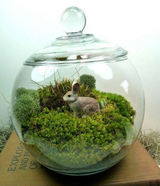 a jar with moss and a faux bunny is a simple to realize idea