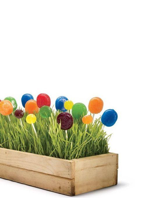 wheatgrass and colorful lollipop centerpiece