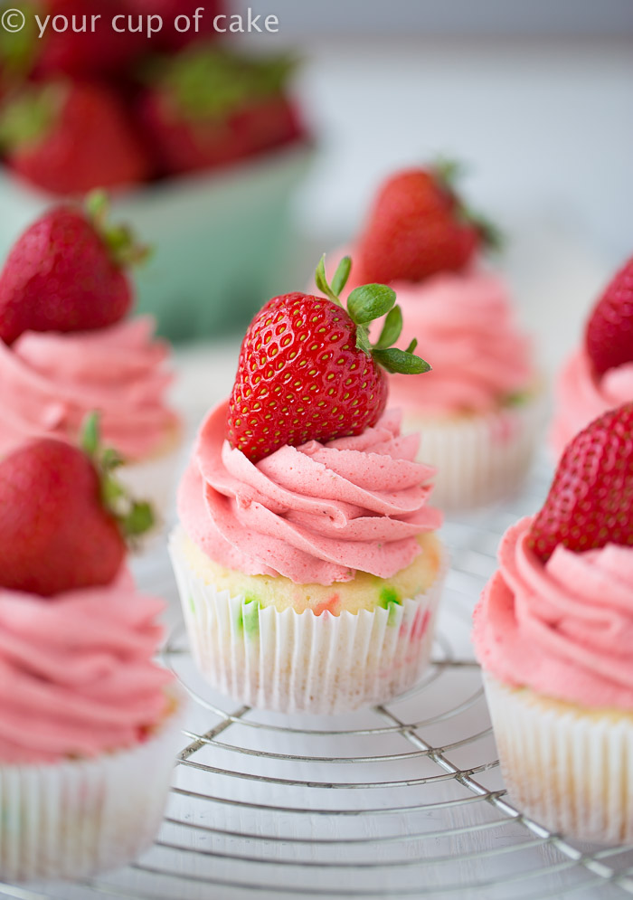 10 Diy Baby Shower Cupcake Recipes That Excite Shelterness